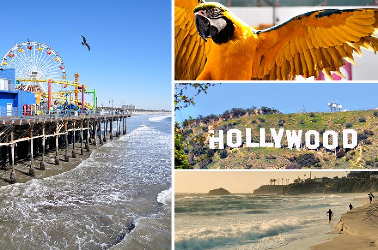 Hollywood & Santa Monica